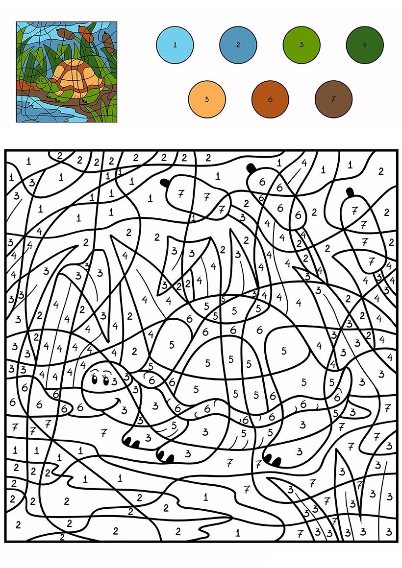 Раскраска Черепашка по цифрам распечатать или скачать ...
