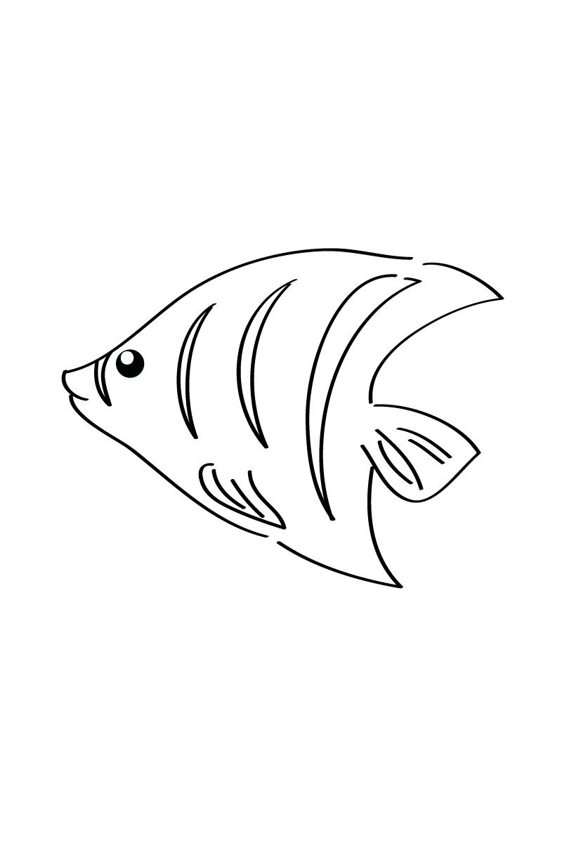 Раскраска Рыбка для малышей распечатать или скачать бесплатно