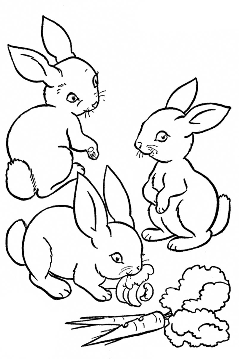 Раскраска Зайчата кушают морковки распечатать или скачать ...