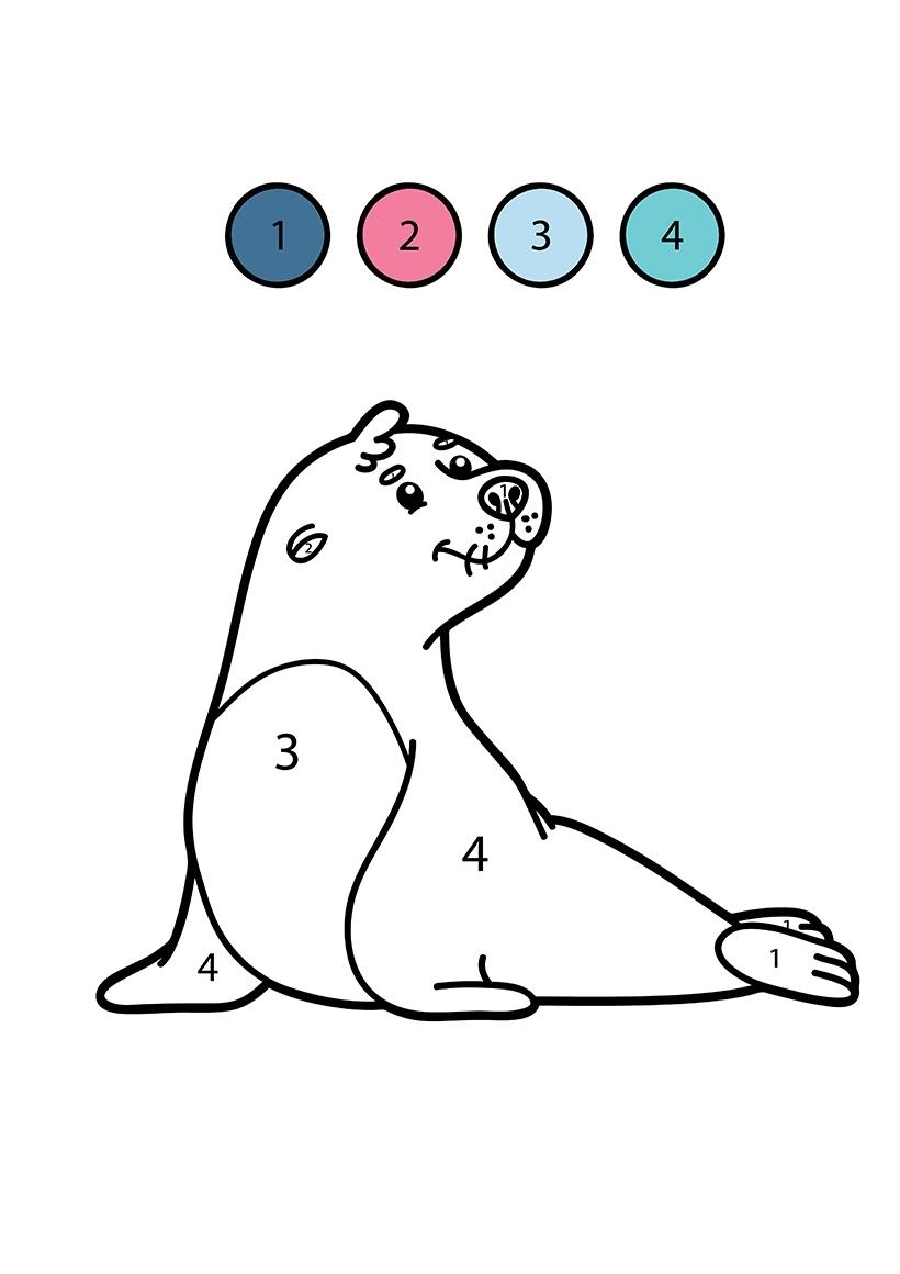 Раскраска Тюлень по цифрам распечатать или скачать бесплатно