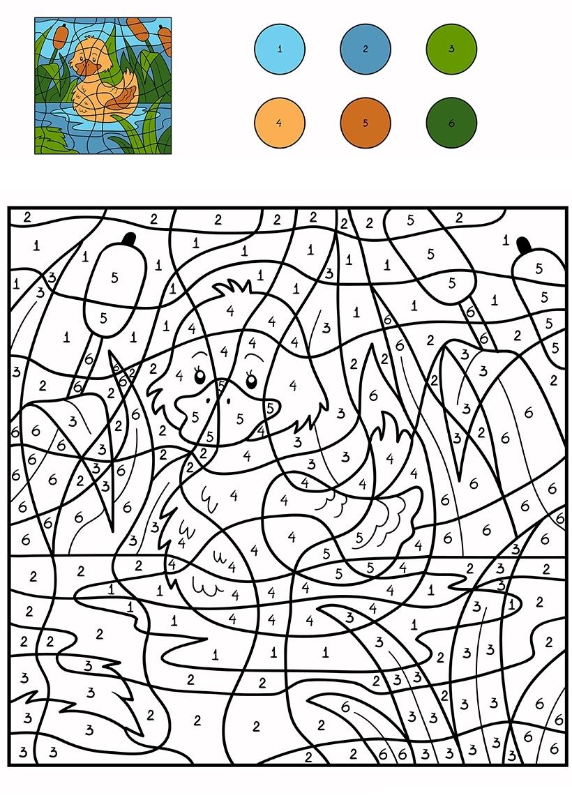 Раскраска Уточка по цифрам распечатать или скачать бесплатно