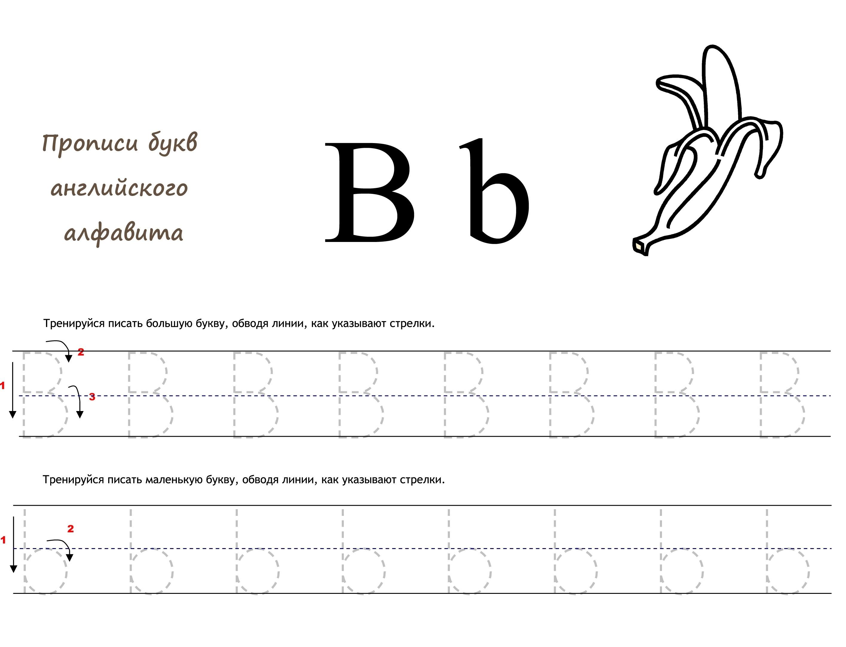 Раскраска Английская буква B прописью распечатать или ...