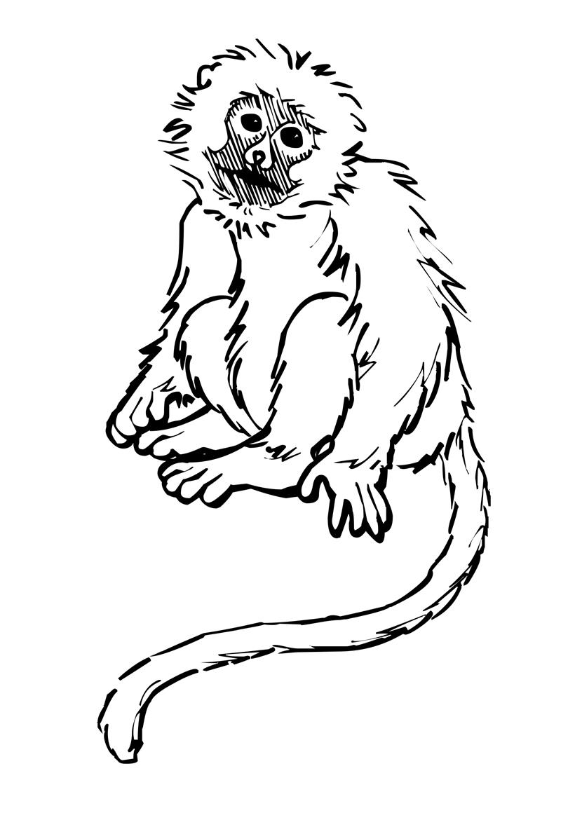 Раскраска Печальная обезьяна распечатать или скачать бесплатно