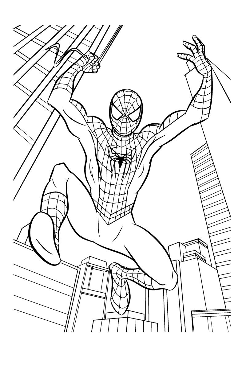 Раскраска Человек паук среди небоскрёбов распечатать или ...