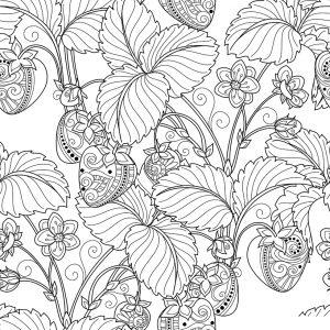 Раскраска Антистресс Полевые цветы распечатать или скачать ...