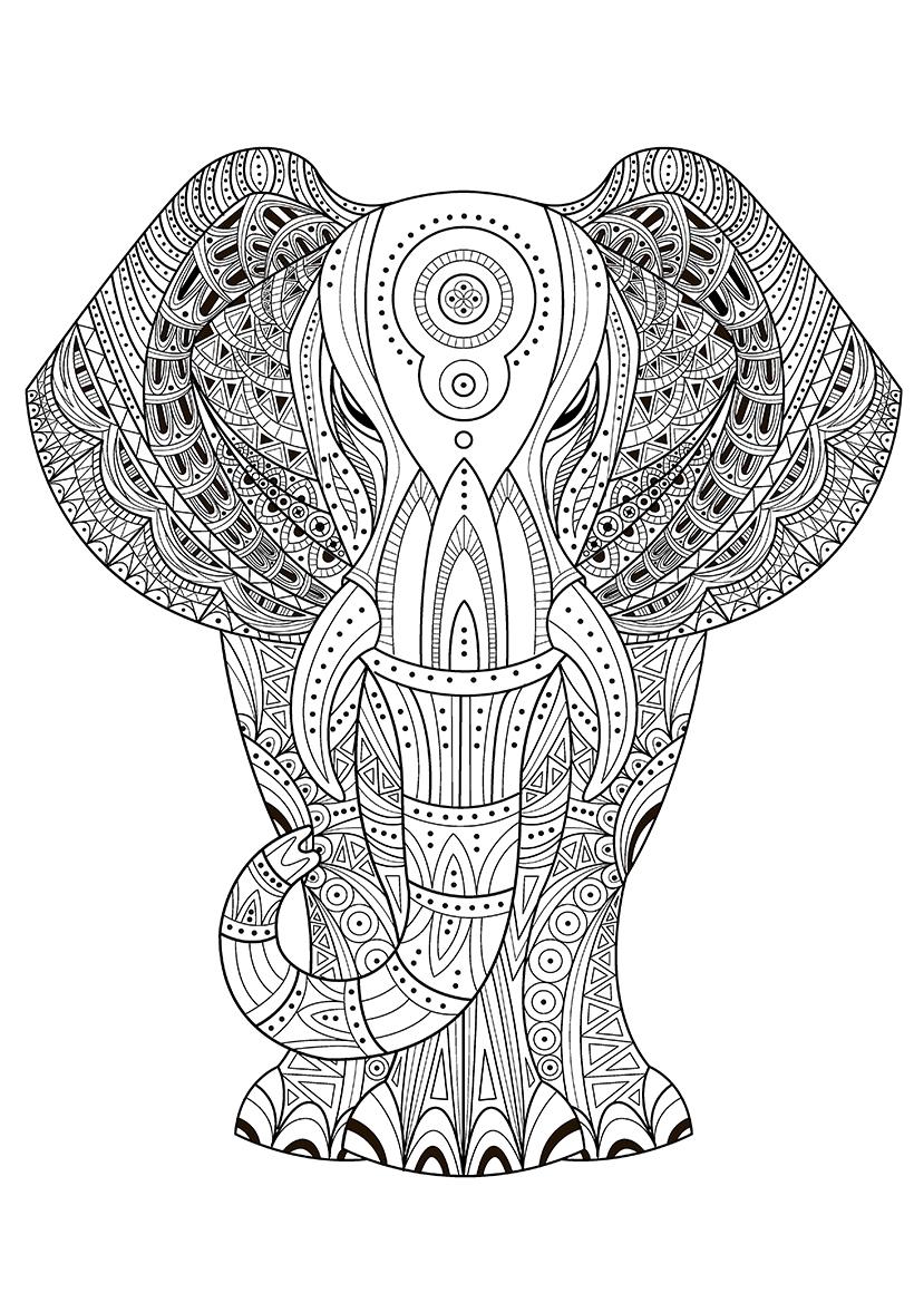 Раскраска Индийский слон распечатать или скачать бесплатно