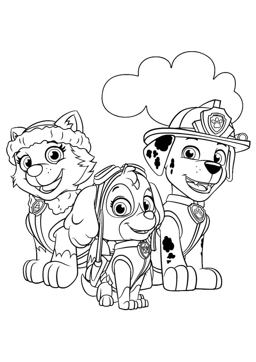 Раскраска Скай и друзья распечатать или скачать бесплатно