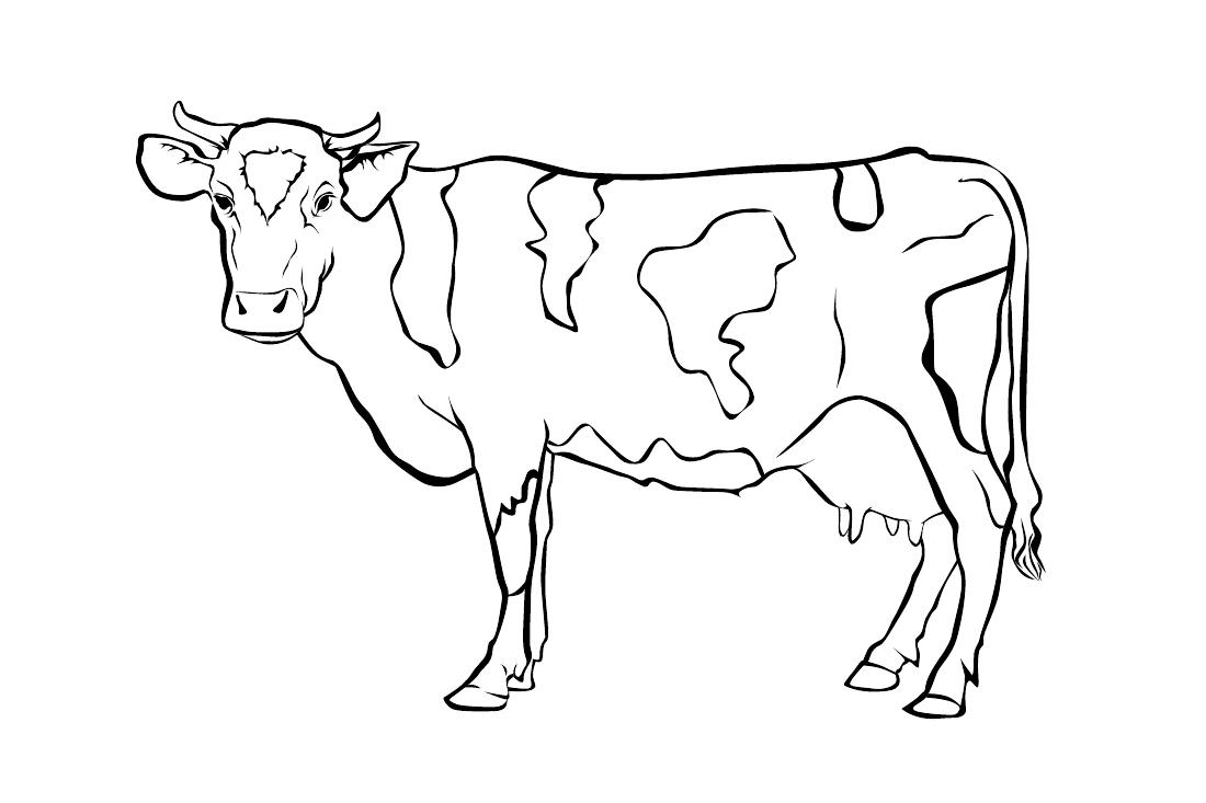 шикарный материал картинки для распечатки домашние животные никому