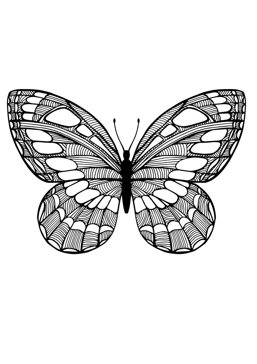 Раскраска Бабочка с рисунками капель распечатать или ...