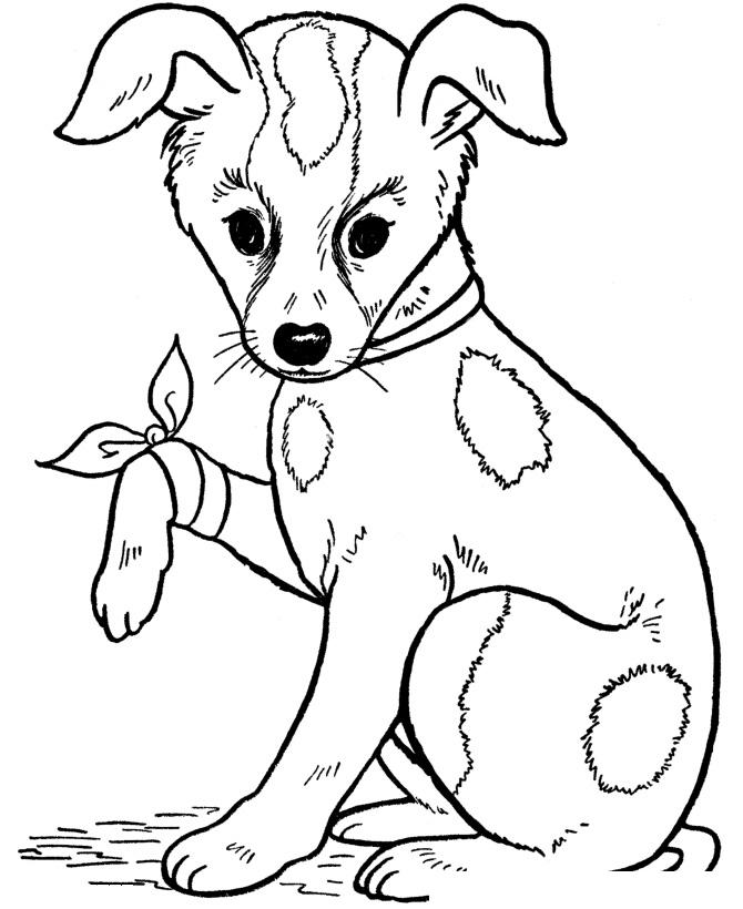 Раскраска Собака поранила лапку распечатать или скачать ...