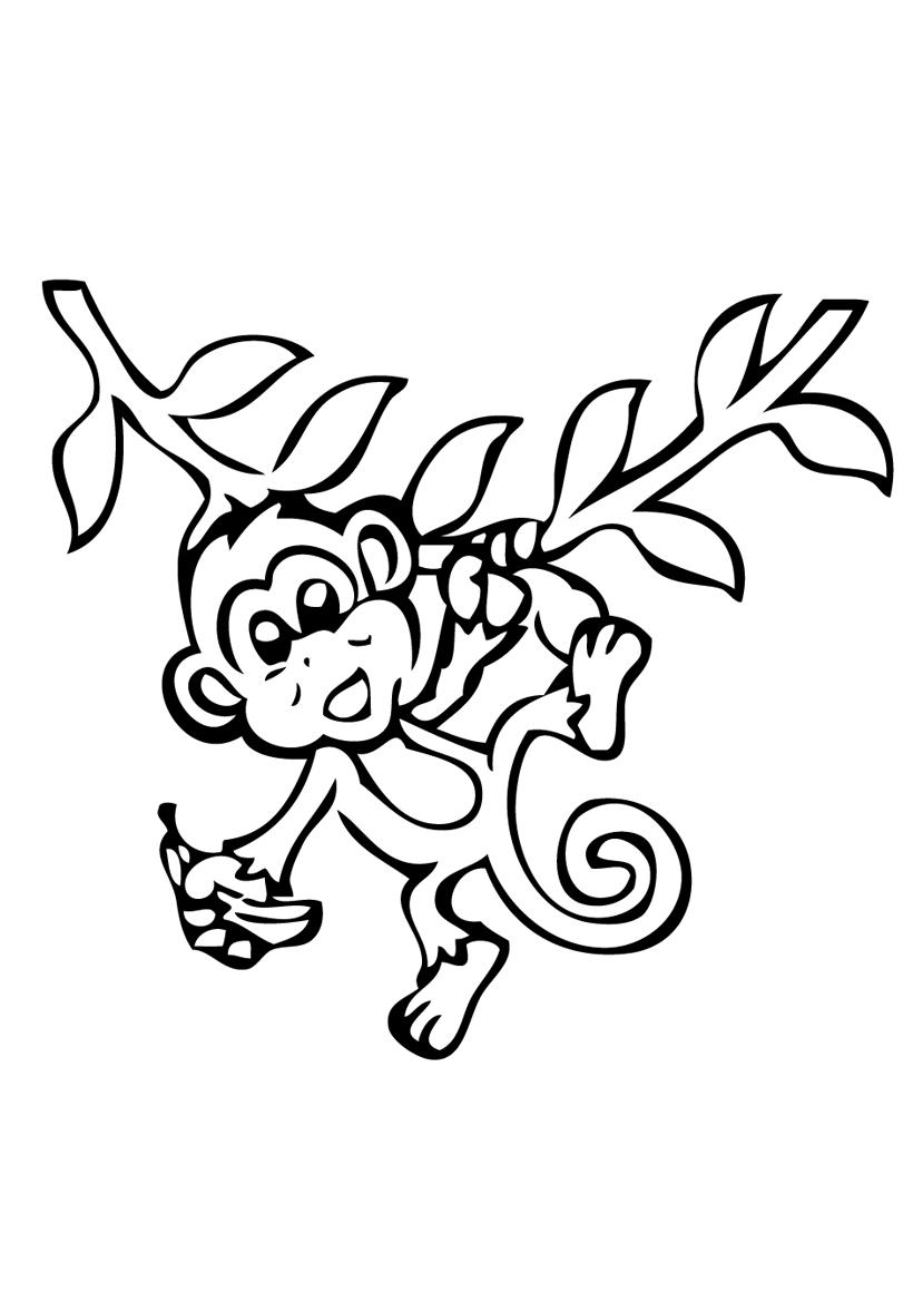 Раскраска Обезьяна на ветке с бананом распечатать или ...