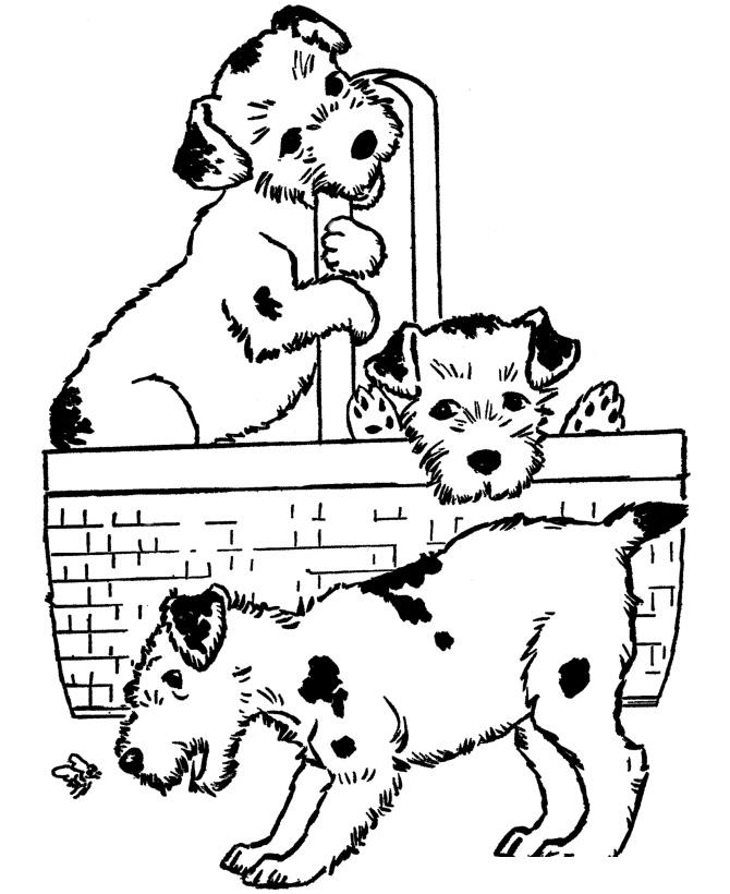 раскраска три собаки распечатать или скачать бесплатно