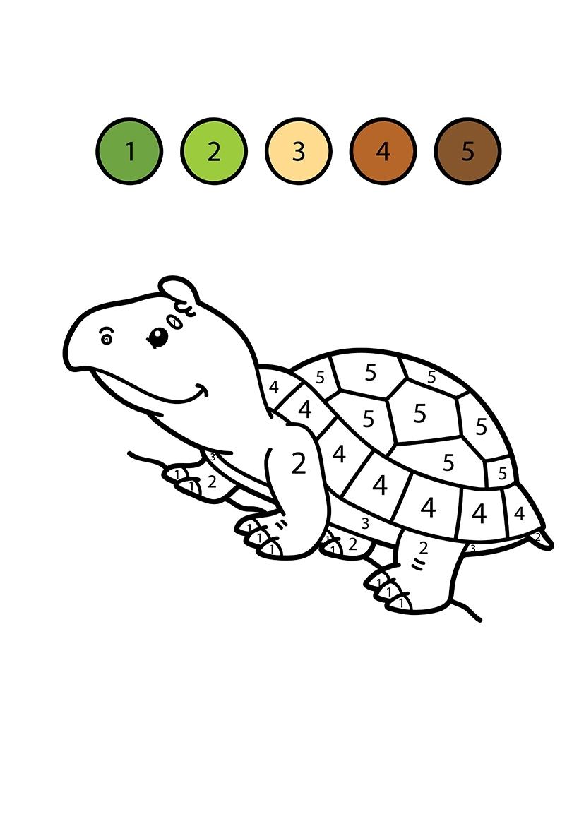 Раскраска Черепаха по цифрам распечатать или скачать бесплатно