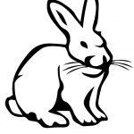 Зайцы, зайчата, кролики