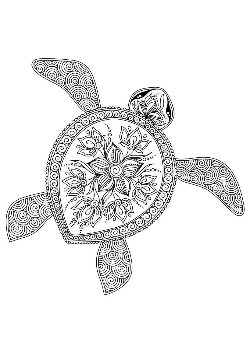 Раскраска Плывущая черепаха распечатать или скачать бесплатно
