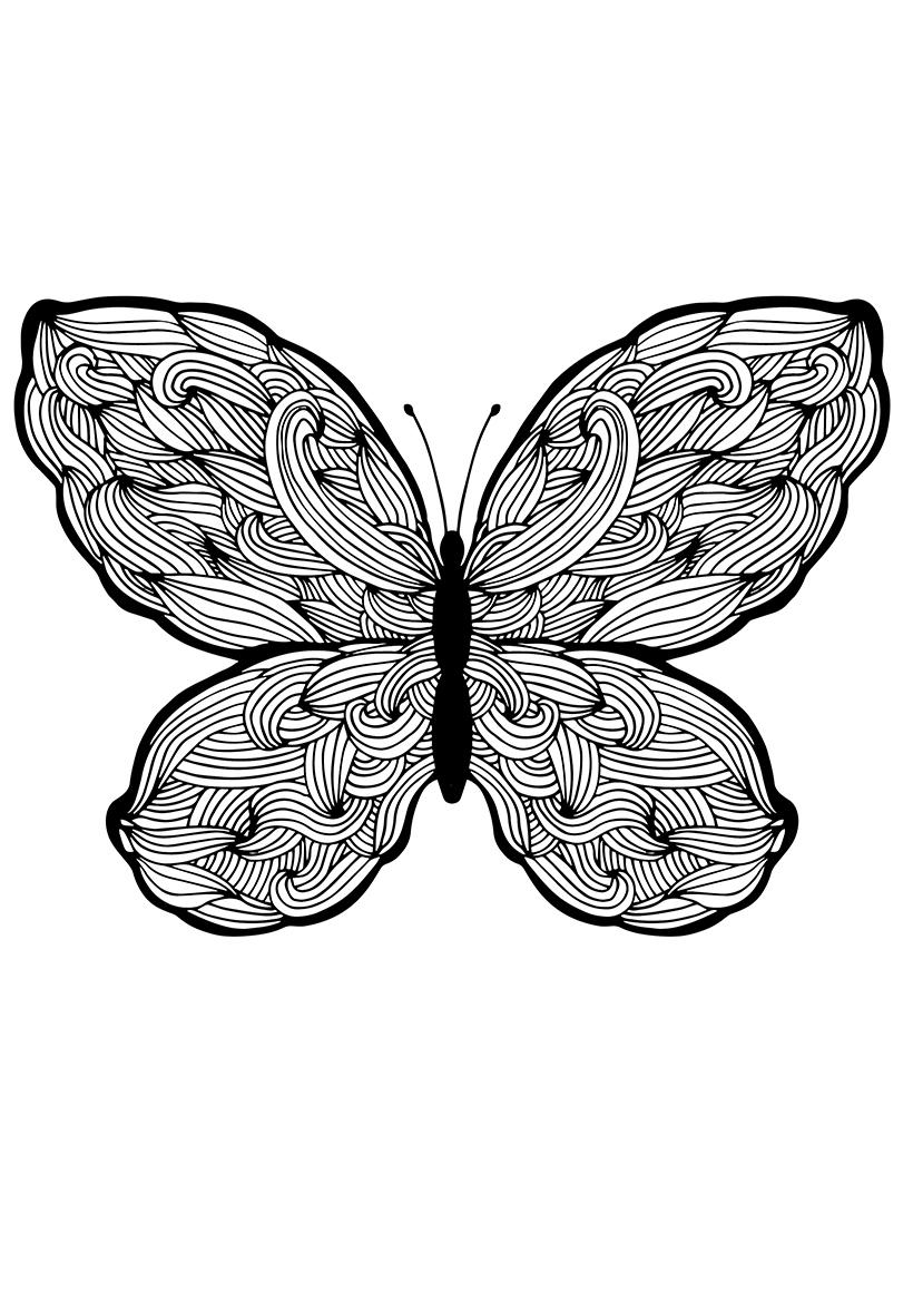 Раскраска Бабочка с плетениями распечатать или скачать ...