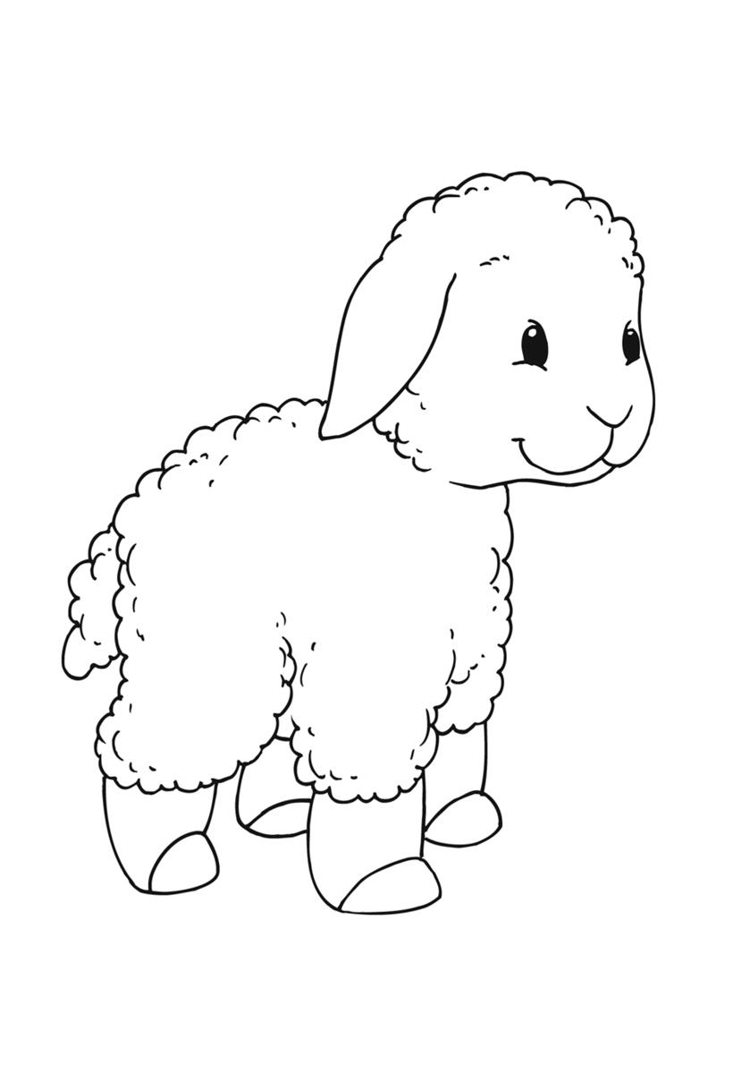 Овца картинка раскраска