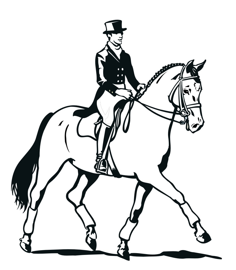 Раскраска Всадник на лошади распечатать или скачать бесплатно