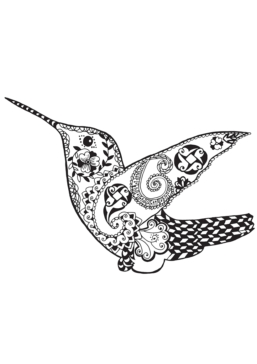 Раскраска Колибри распечатать или скачать бесплатно