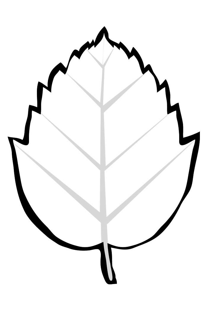 для раскраска листья березы распечатать нужно