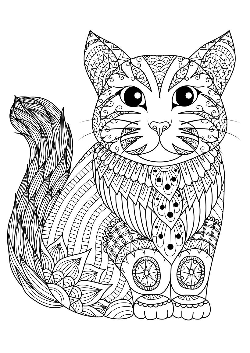 Раскраска Простая кошка распечатать или скачать бесплатно