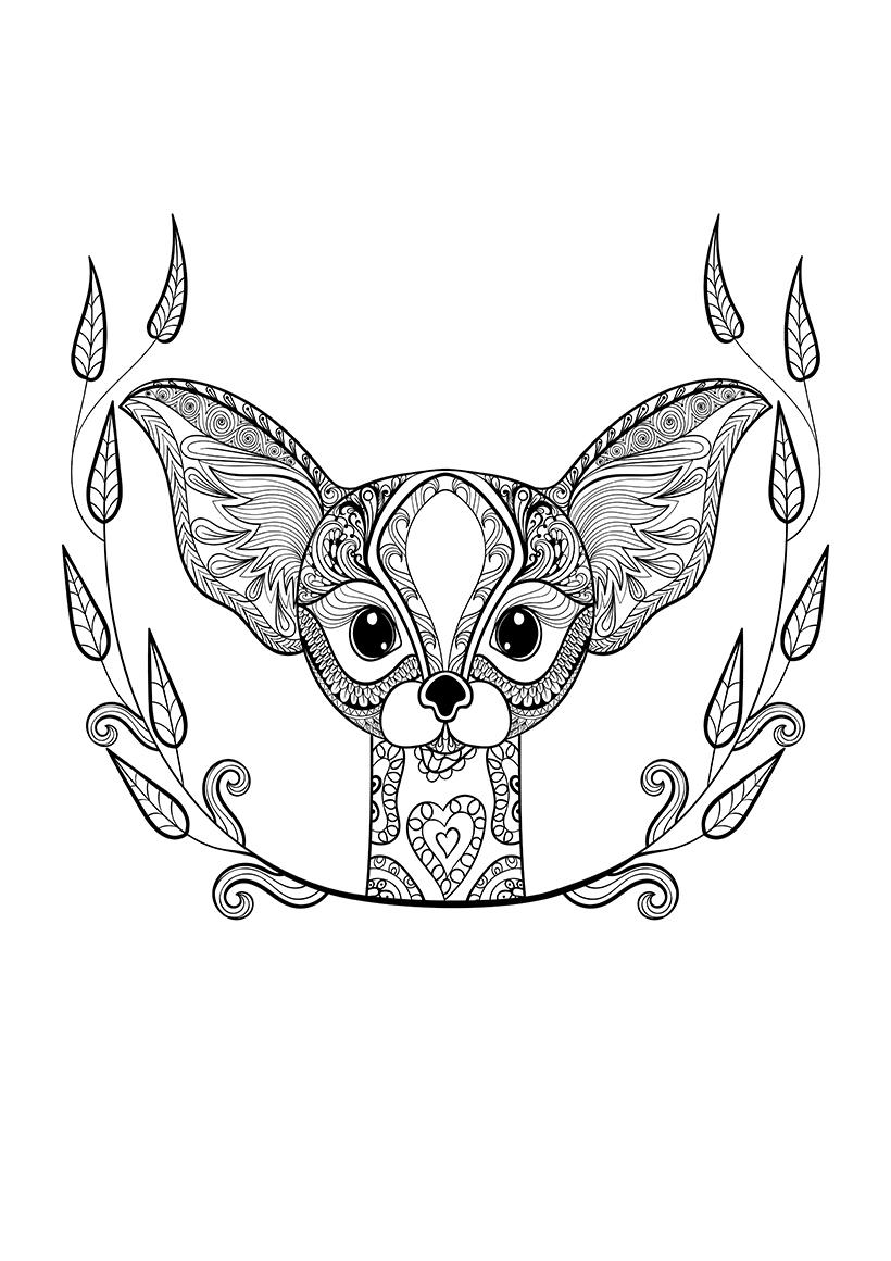 Раскраска Необычная лиса распечатать или скачать бесплатно
