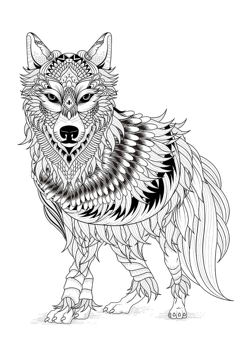 раскраска северный волк распечатать или скачать бесплатно