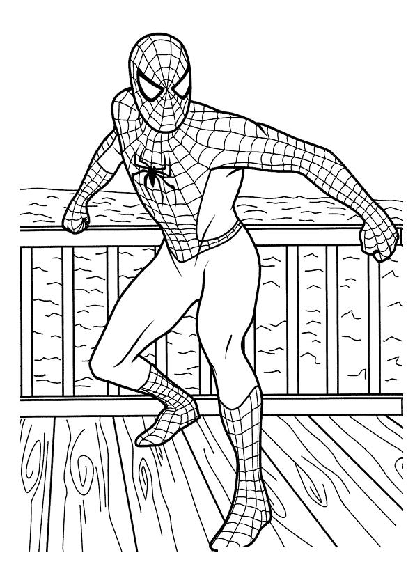 Раскраска Человек паук на берегу распечатать или скачать ...