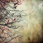 Ветер осенний в лесах подымается